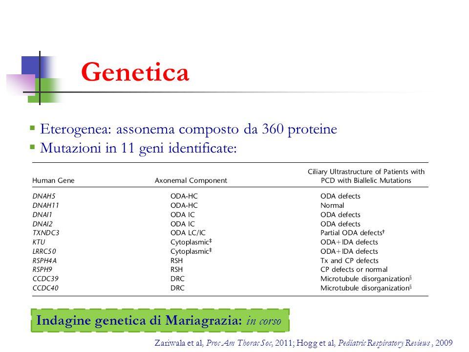 Genetica Eterogenea: assonema composto da 360 proteine Mutazioni in 11 geni identificate: Zariwala et al, Proc Am Thorac Soc, 2011; Hogg et al, Pediat