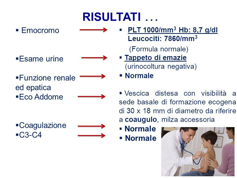 RISULTATI … Emocromo Esame urine Funzione renale ed epatica Eco Addome Coagulazione C3-C4 PLT 1000/mm 3 Hb: 8,7 g/dl Leucociti: 7860/mm 3 (Formula nor