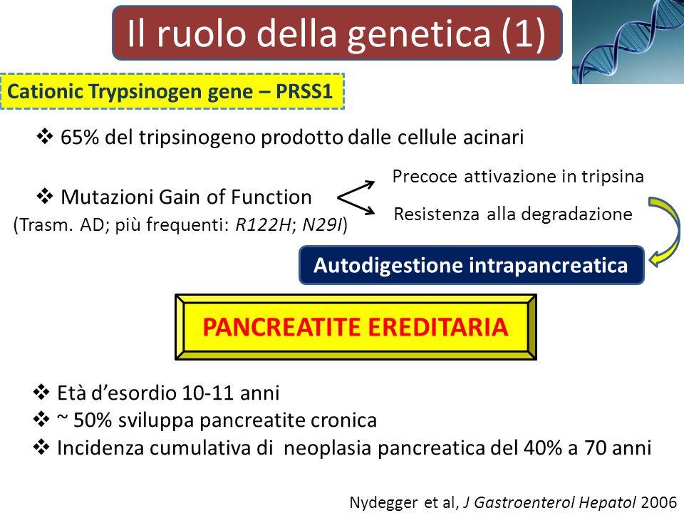 Il ruolo della genetica (1) Cationic Trypsinogen gene – PRSS1 65% del tripsinogeno prodotto dalle cellule acinari Mutazioni Gain of Function Precoce attivazione in tripsina Resistenza alla degradazione Autodigestione intrapancreatica (Trasm.