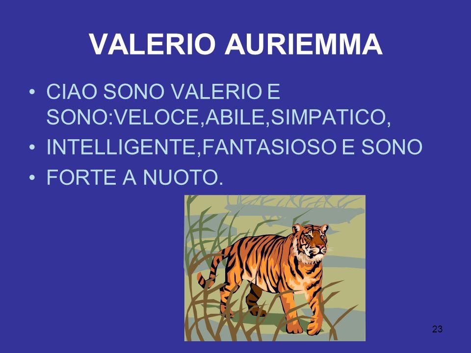 23 VALERIO AURIEMMA CIAO SONO VALERIO E SONO:VELOCE,ABILE,SIMPATICO, INTELLIGENTE,FANTASIOSO E SONO FORTE A NUOTO.