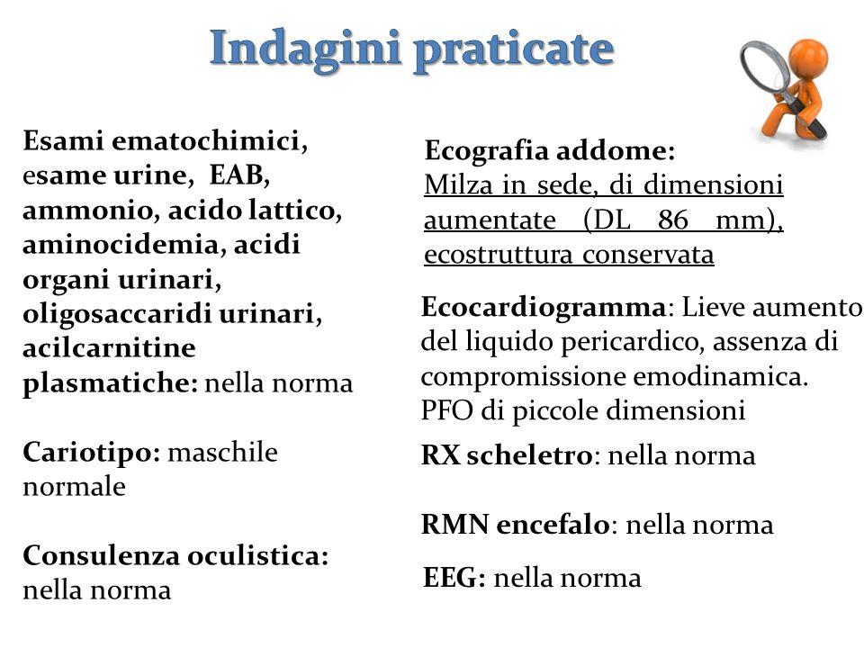 RX scheletro: nella norma RMN encefalo: nella norma Ecografia addome: Milza in sede, di dimensioni aumentate (DL 86 mm), ecostruttura conservata Ecoca