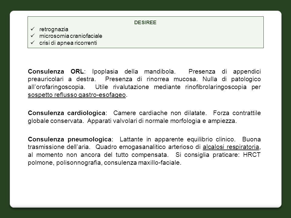 Consulenza ORL: Ipoplasia della mandibola. Presenza di appendici preauricolari a destra. Presenza di rinorrea mucosa. Nulla di patologico allorofaring
