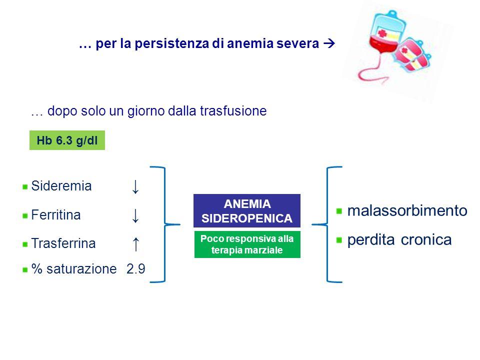 … dopo solo un giorno dalla trasfusione Hb 6.3 g/dl … per la persistenza di anemia severa Sideremia Ferritina Trasferrina % saturazione 2.9 Poco respo