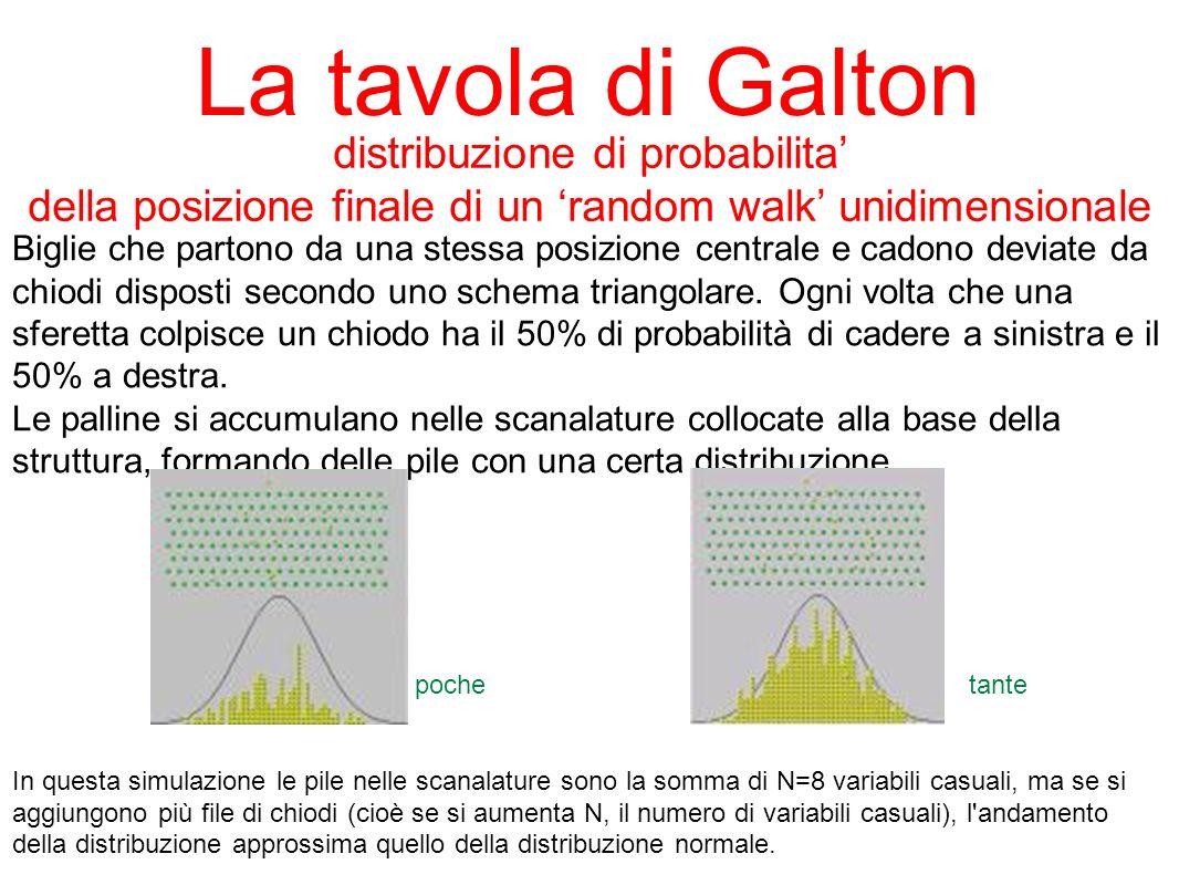 La tavola di Galton Biglie che partono da una stessa posizione centrale e cadono deviate da chiodi disposti secondo uno schema triangolare. Ogni volta