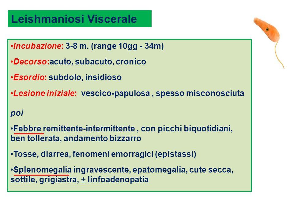Incubazione: 3-8 m. (range 10gg - 34m) Decorso:acuto, subacuto, cronico Esordio: subdolo, insidioso Lesione iniziale: vescico-papulosa, spesso miscono