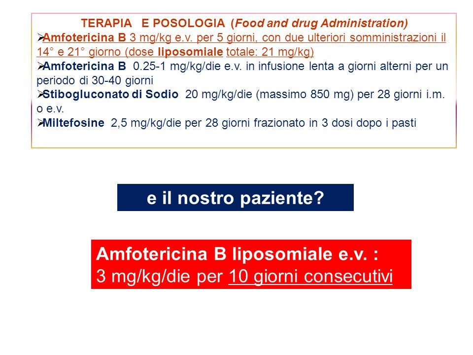 TERAPIA E POSOLOGIA (Food and drug Administration) Amfotericina B 3 mg/kg e.v. per 5 giorni, con due ulteriori somministrazioni il 14° e 21° giorno (d