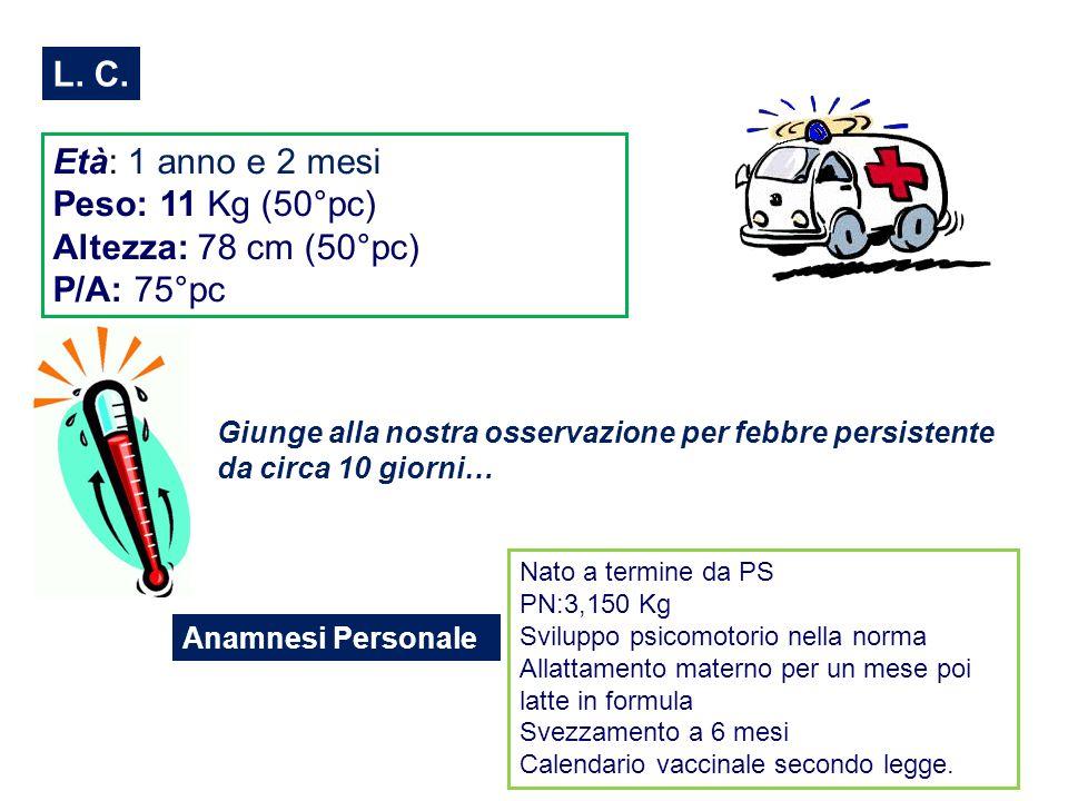8 mesi 1° ricovero febbre persistente 8 mesi 1° ricovero presso AORN Santobono-Pausillipon per febbre persistente Splenomegalia Epatomegalia Anemia normocromica Piastrinopenia Leucopenia con linfocitosi Aumento indici di flogosi IgG Aspirato Midollare: numerose Leishmaniae in sede intra ed extra cellulare Sierologia per Leishmaniae: 1/160 Leishmaniosi viscerale Amfotericina B liposomiale e.v.