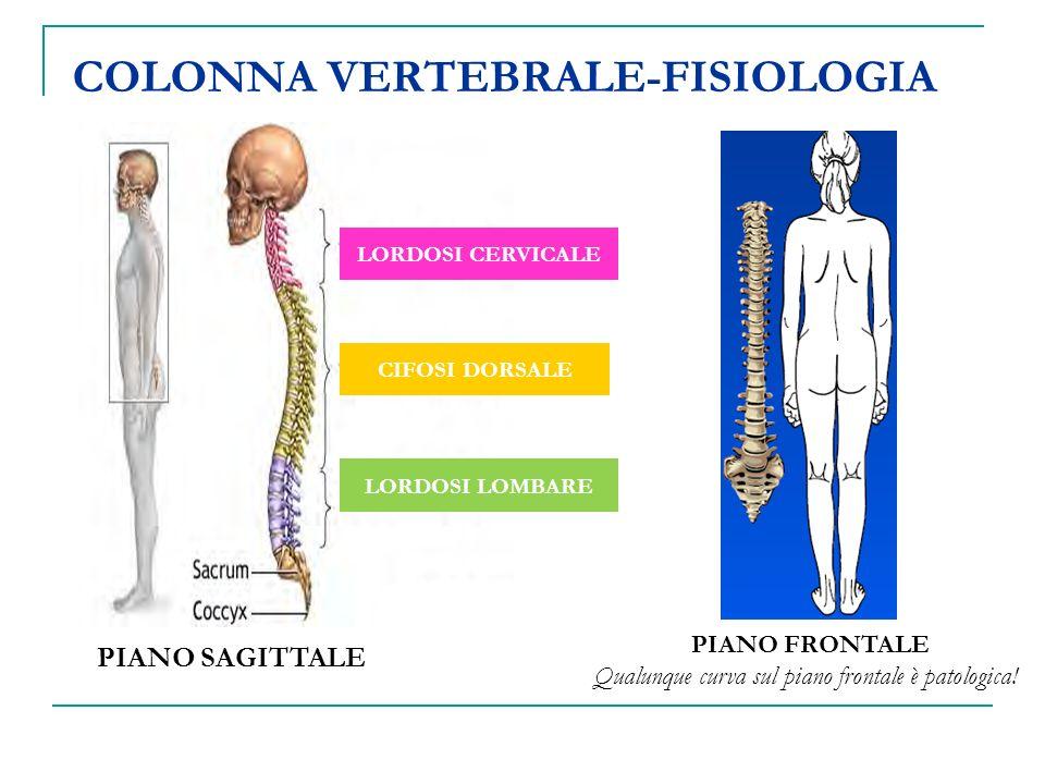 COLONNA VERTEBRALE-FISIOLOGIA PIANO SAGITTALE PIANO FRONTALE Qualunque curva sul piano frontale è patologica! LORDOSI CERVICALE CIFOSI DORSALE LORDOSI