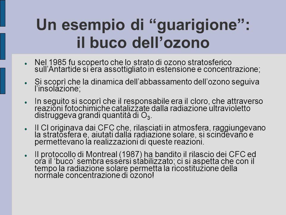 Un esempio di guarigione: il buco dellozono Nel 1985 fu scoperto che lo strato di ozono stratosferico sullAntartide si era assottigliato in estensione