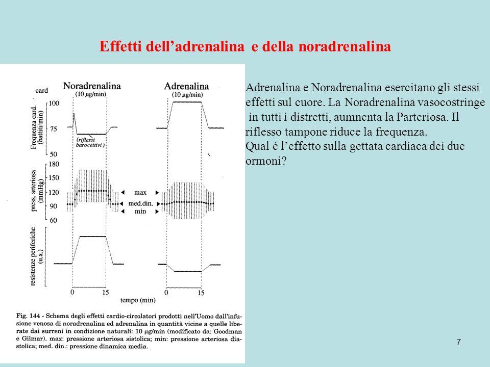 7 Effetti delladrenalina e della noradrenalina Adrenalina e Noradrenalina esercitano gli stessi effetti sul cuore.