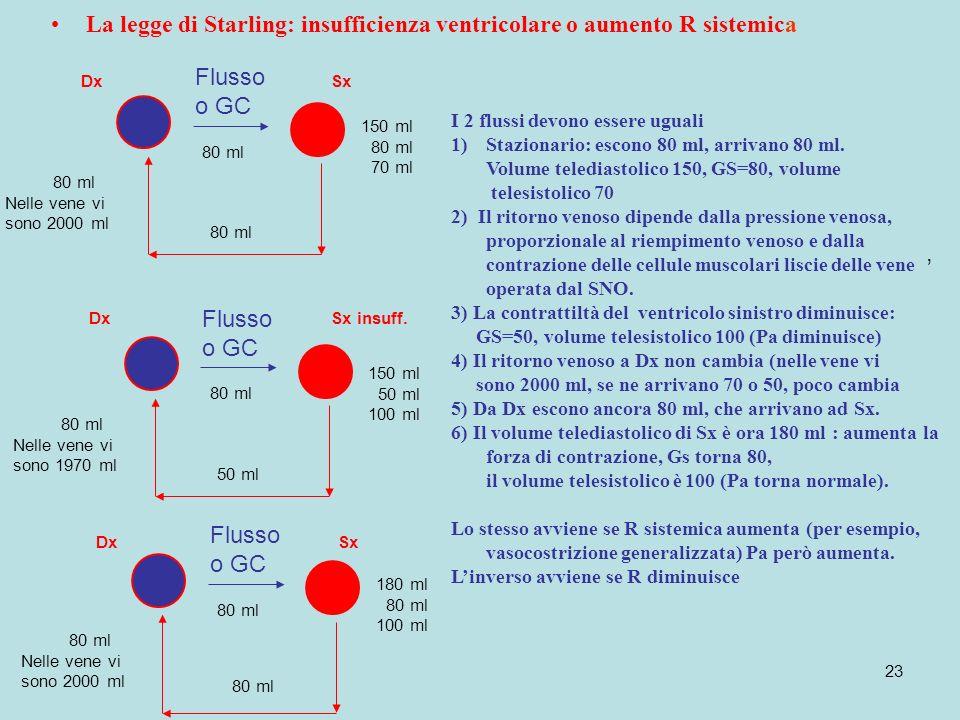 23 La legge di Starling: insufficienza ventricolare o aumento R sistemica DxSx Flusso o GC I 2 flussi devono essere uguali 1)Stazionario: escono 80 ml