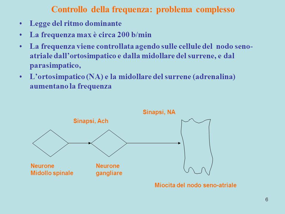 6 Controllo della frequenza: problema complesso Legge del ritmo dominante La frequenza max è circa 200 b/min La frequenza viene controllata agendo sul