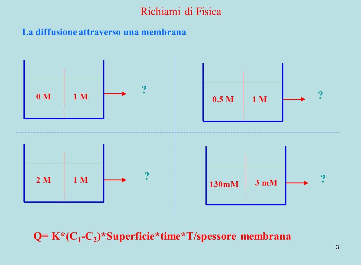 3 Richiami di Fisica La diffusione attraverso una membrana 1 M0 M 1 M0.5 M 1 M2 M 3 mM 130mM Q= K*(C 1 -C 2 )*Superficie*time*T/spessore membrana ? ?