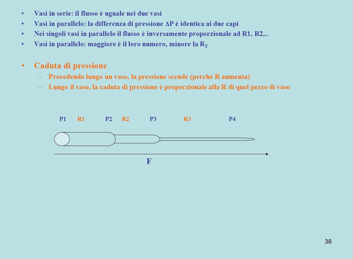 36 Vasi in serie: il flusso è uguale nei due vasi Vasi in parallelo: la differenza di pressione ΔP è identica ai due capi Nei singoli vasi in parallel