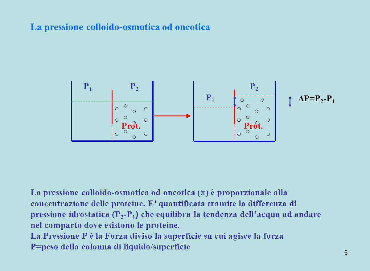 5 Prot. La pressione colloido-osmotica od oncotica P1P1 P2P2 P1P1 P2P2 La pressione colloido-osmotica od oncotica ( ) è proporzionale alla concentrazi