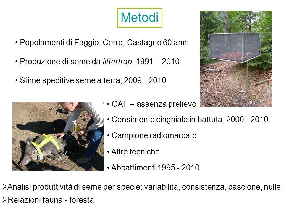 Popolamenti di Faggio, Cerro, Castagno 60 anni Produzione di seme da littertrap, 1991 – 2010 Stime speditive seme a terra, 2009 - 2010 Censimento cing