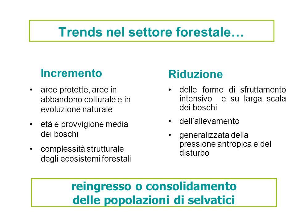Trends nel settore forestale… Incremento aree protette, aree in abbandono colturale e in evoluzione naturale età e provvigione media dei boschi comple