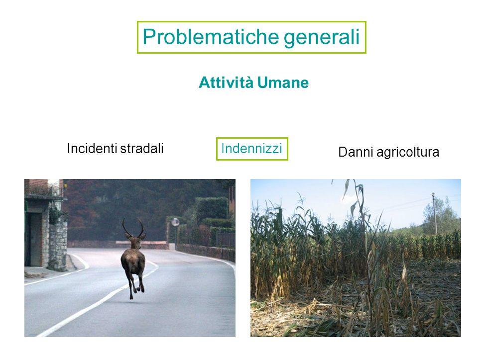 Problematiche generali Attività Umane Danni agricoltura Incidenti stradali Indennizzi