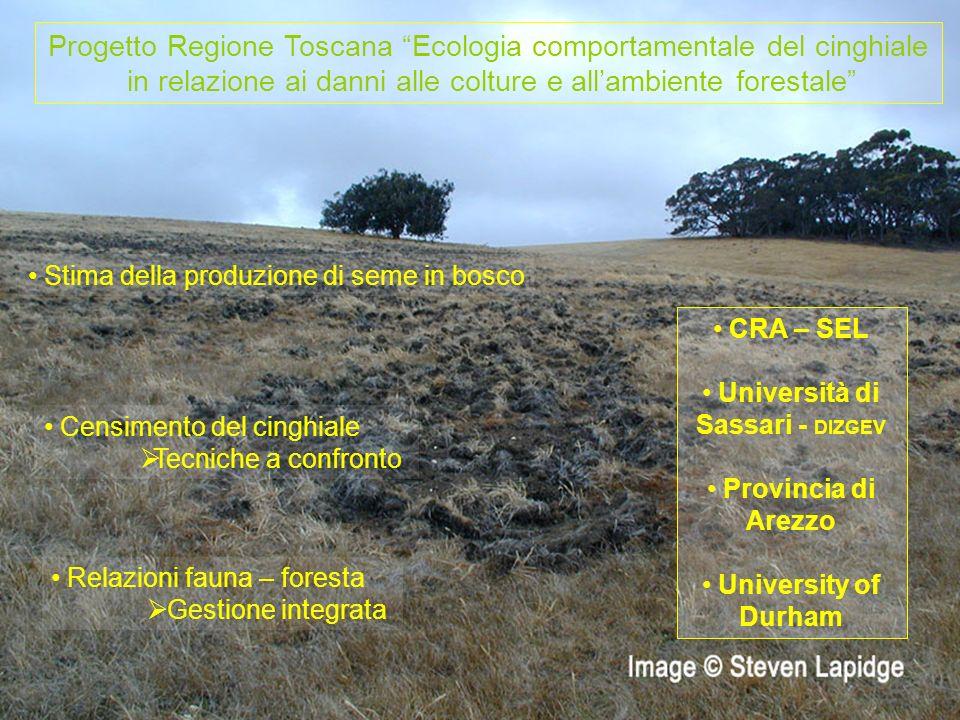 Progetto Regione Toscana Ecologia comportamentale del cinghiale in relazione ai danni alle colture e allambiente forestale Stima della produzione di s