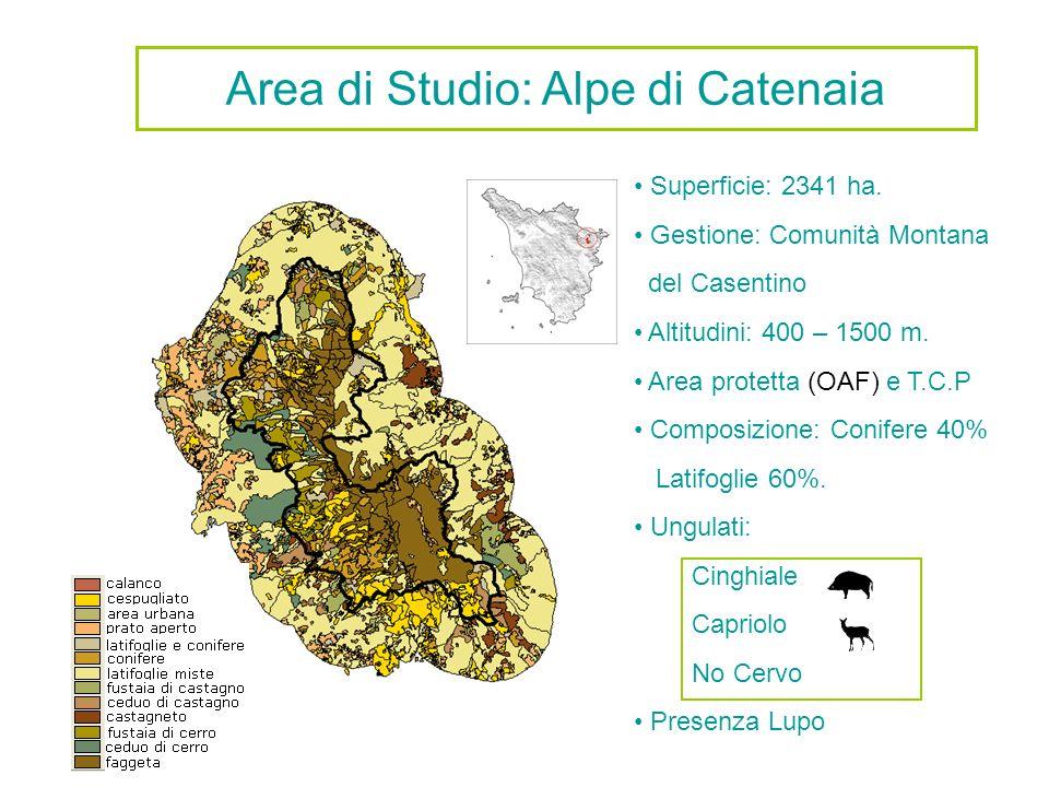 Area di Studio: Alpe di Catenaia Superficie: 2341 ha. Gestione: Comunità Montana del Casentino Altitudini: 400 – 1500 m. Area protetta (OAF) e T.C.P C