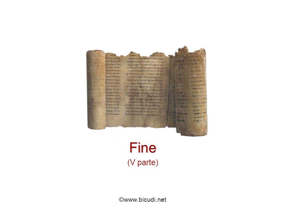Fine (V parte) ©www.bicudi.net