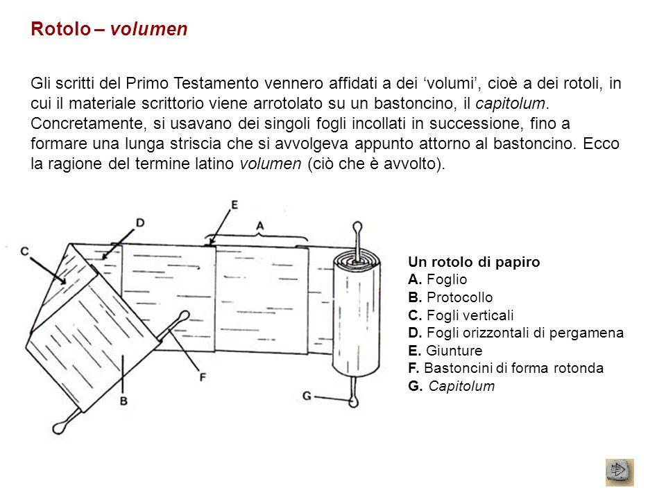 Rotolo – volumen Gli scritti del Primo Testamento vennero affidati a dei volumi, cioè a dei rotoli, in cui il materiale scrittorio viene arrotolato su