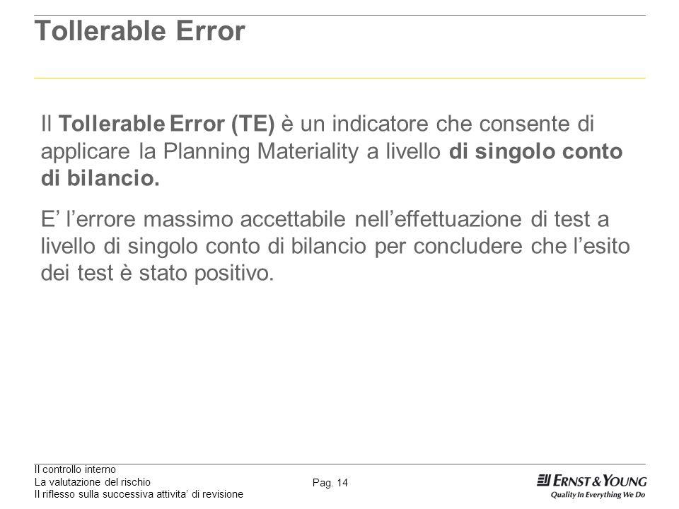 Il controllo interno La valutazione del rischio Il riflesso sulla successiva attivita di revisione Pag. 14 Tollerable Error Il Tollerable Error (TE) è