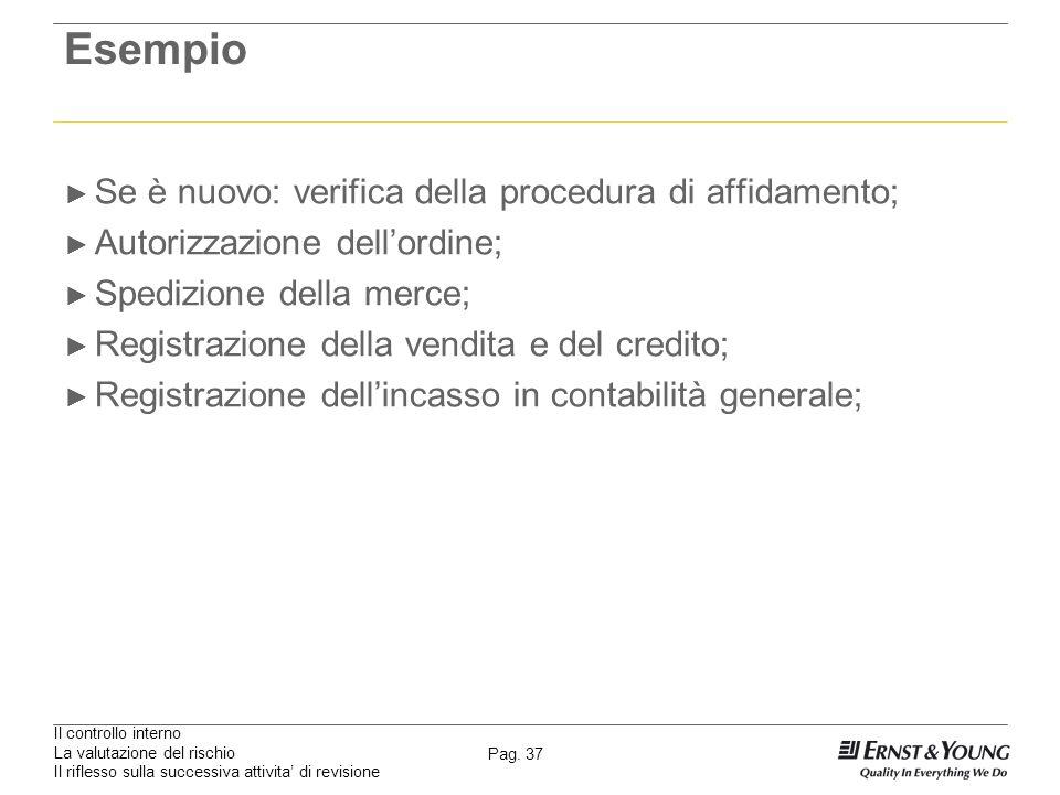 Il controllo interno La valutazione del rischio Il riflesso sulla successiva attivita di revisione Pag. 37 Esempio Se è nuovo: verifica della procedur