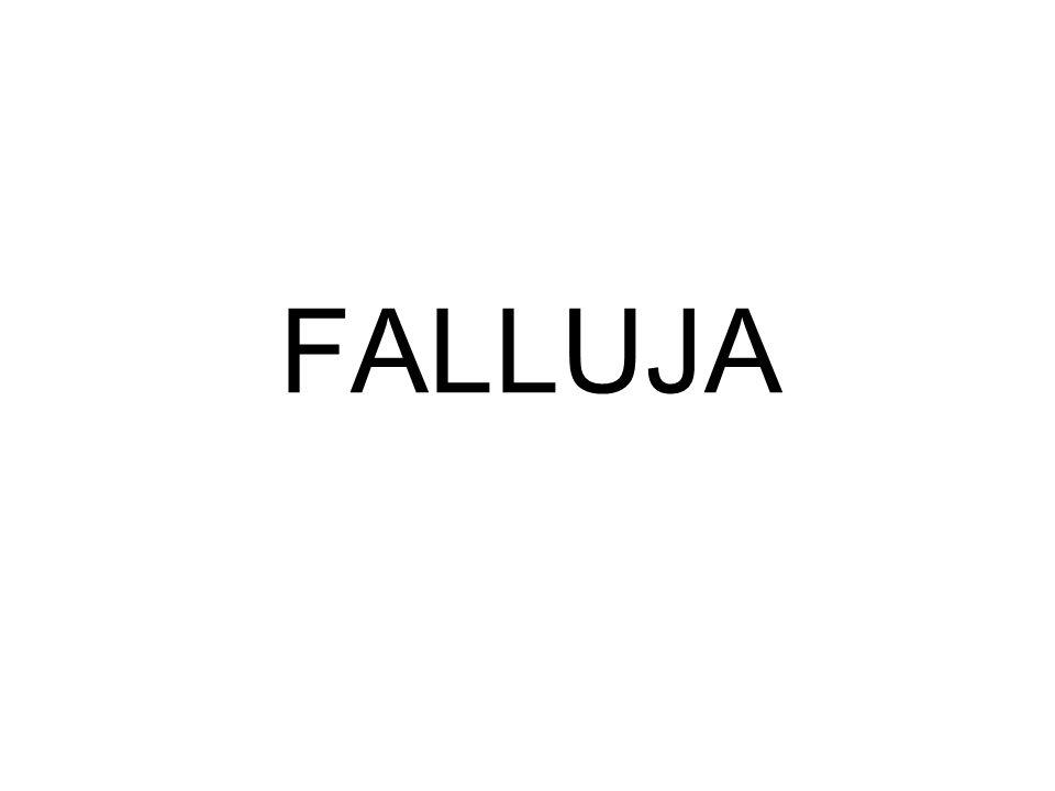 FALLUJA