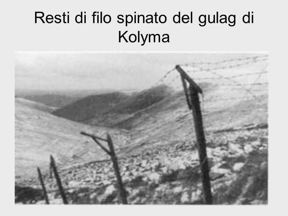 Resti di filo spinato del gulag di Kolyma