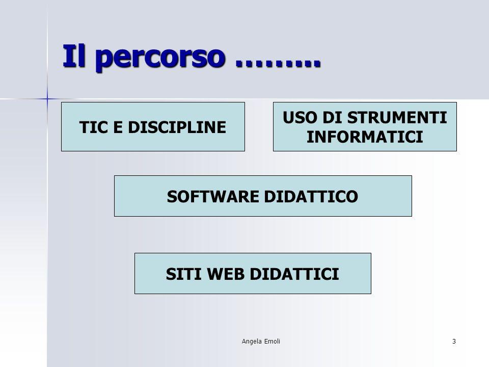 Angela Emoli13 SCELTA DEL SD Obiettivi: Scegliere il SD rispondente a date esigenze formative.