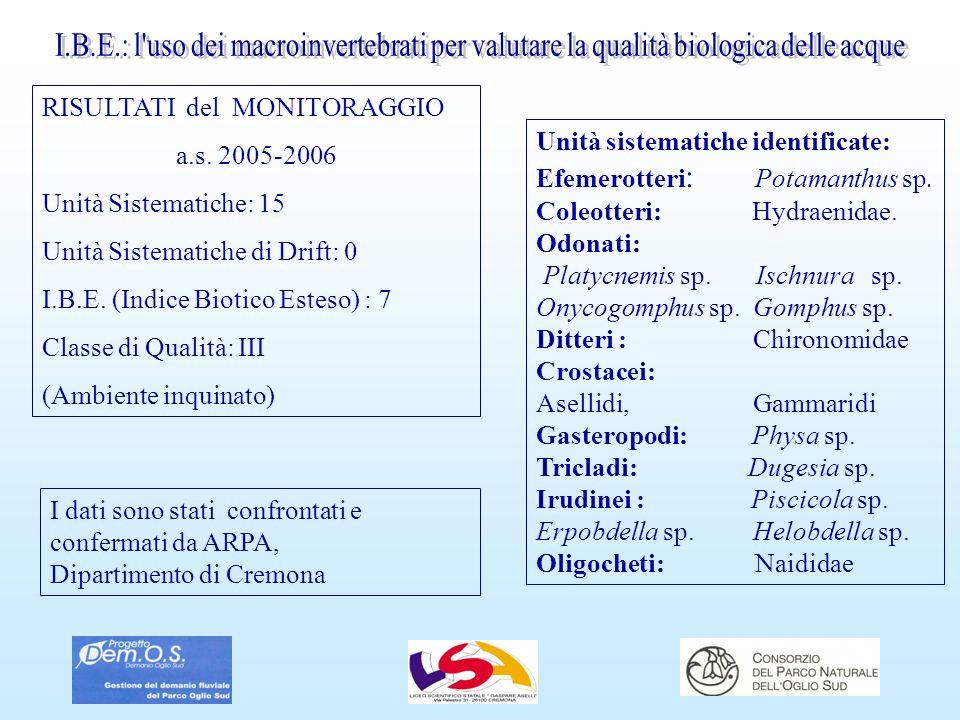 RISULTATI del MONITORAGGIO a.s. 2005-2006 Unità Sistematiche: 15 Unità Sistematiche di Drift: 0 I.B.E. (Indice Biotico Esteso) : 7 Classe di Qualità: