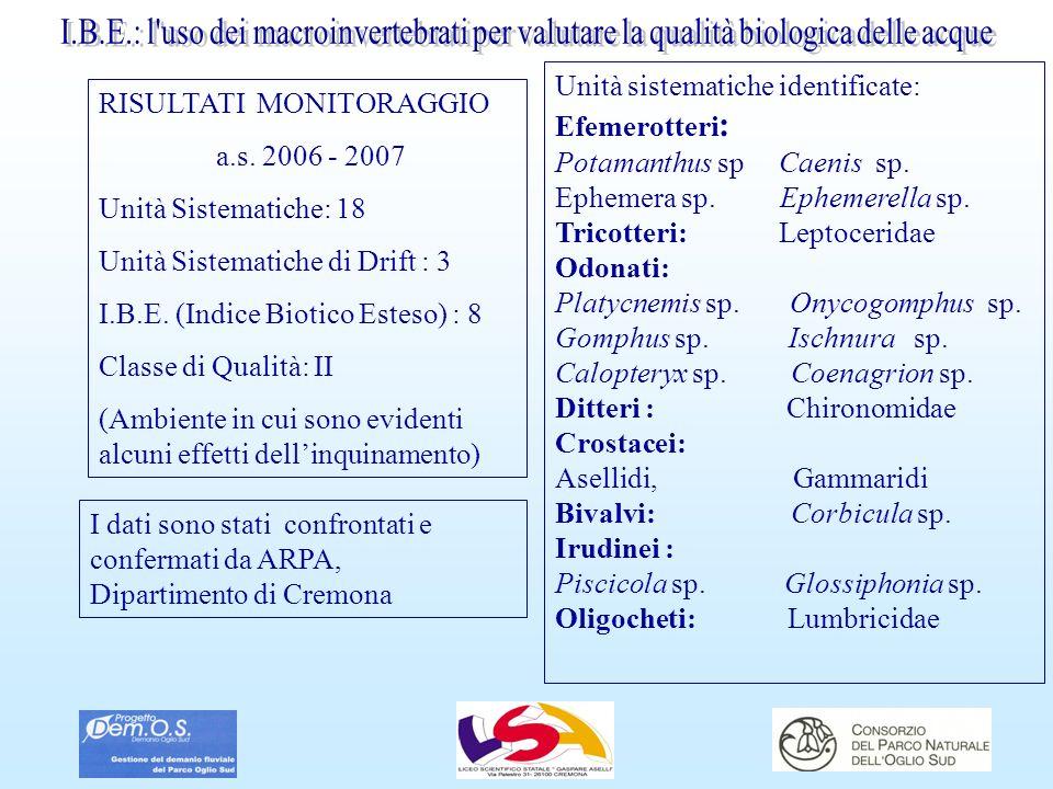 RISULTATI MONITORAGGIO a.s. 2006 - 2007 Unità Sistematiche: 18 Unità Sistematiche di Drift : 3 I.B.E. (Indice Biotico Esteso) : 8 Classe di Qualità: I