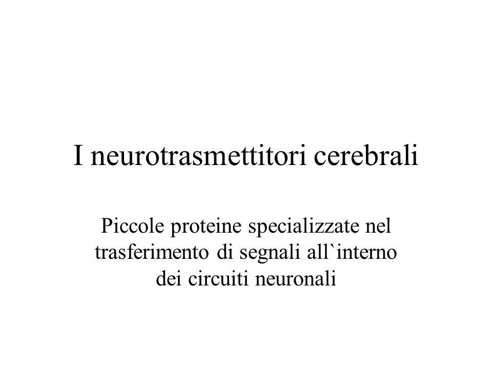 I neurotrasmettitori cerebrali Piccole proteine specializzate nel trasferimento di segnali all`interno dei circuiti neuronali