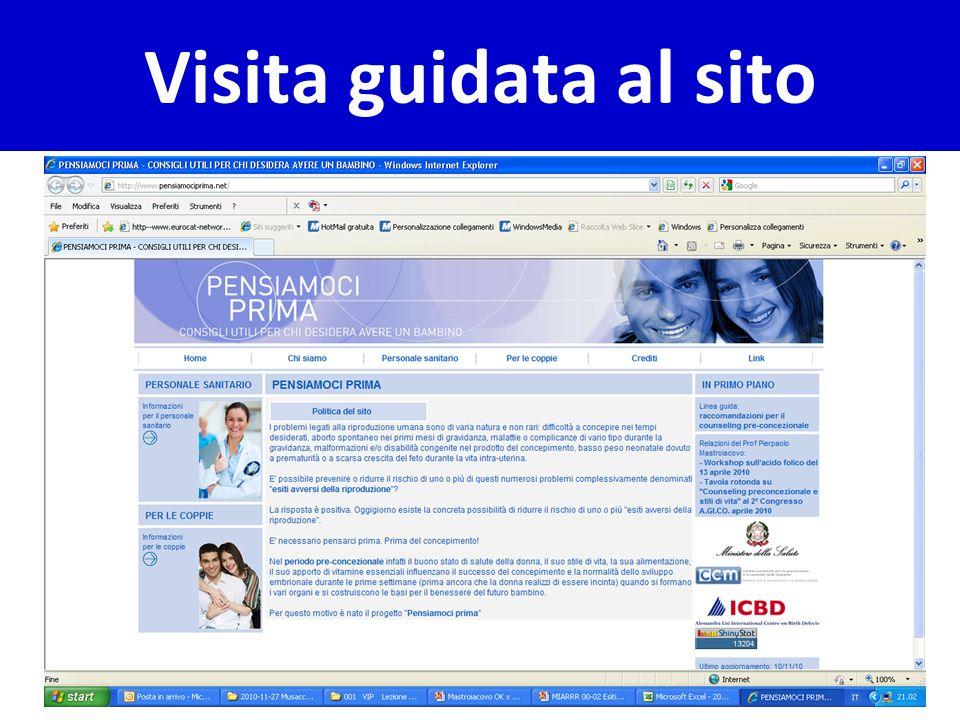 Visita guidata al sito