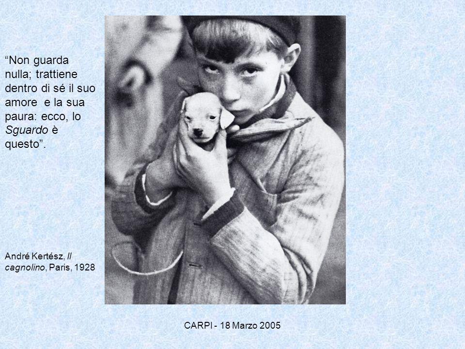 Non guarda nulla; trattiene dentro di sé il suo amore e la sua paura: ecco, lo Sguardo è questo. André Kertész, Il cagnolino, Paris, 1928