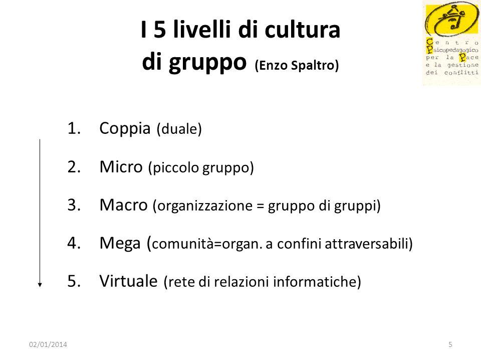 I 5 livelli di cultura di gruppo (Enzo Spaltro) 1.Coppia (duale) 2.Micro (piccolo gruppo) 3.Macro (organizzazione = gruppo di gruppi) 4.Mega ( comunit