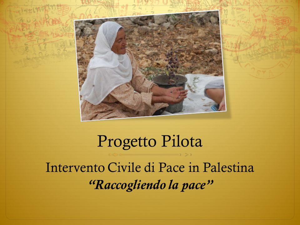 Progetto Pilota Intervento Civile di Pace in Palestina Raccogliendo la pace