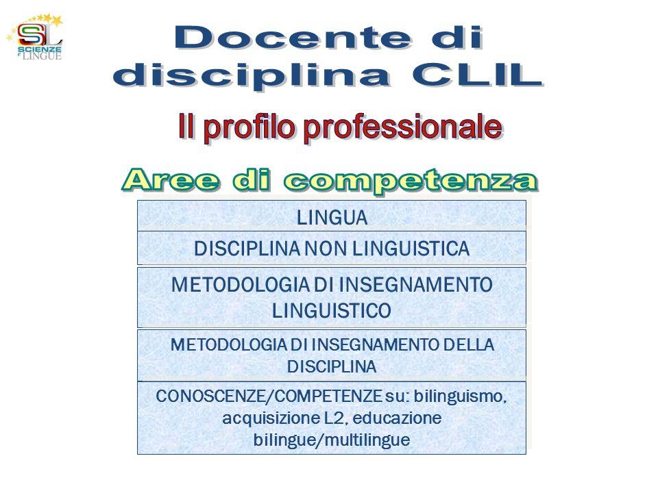 LINGUA DISCIPLINA NON LINGUISTICA METODOLOGIA DI INSEGNAMENTO LINGUISTICO METODOLOGIA DI INSEGNAMENTO DELLA DISCIPLINA CONOSCENZE/COMPETENZE su: bilin