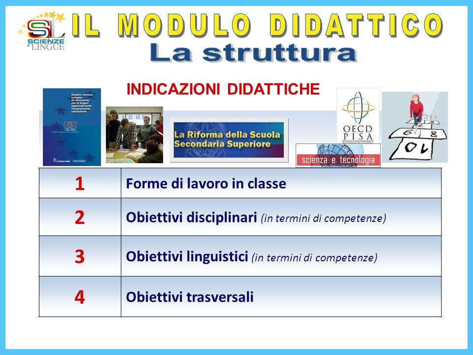 1 Forme di lavoro in classe 2 Obiettivi disciplinari (in termini di competenze) 3 Obiettivi linguistici (in termini di competenze) 4 Obiettivi trasver