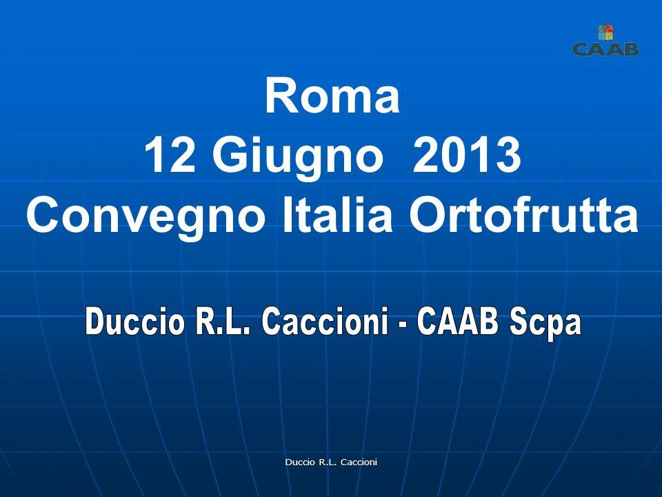 Duccio R.L. Caccioni Roma 12 Giugno 2013 Convegno Italia Ortofrutta