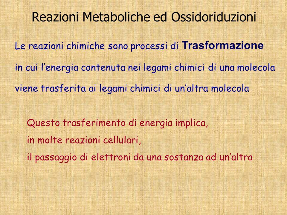 Reazioni Metaboliche ed Ossidoriduzioni Le reazioni chimiche sono processi di Trasformazione in cui lenergia contenuta nei legami chimici di una molec