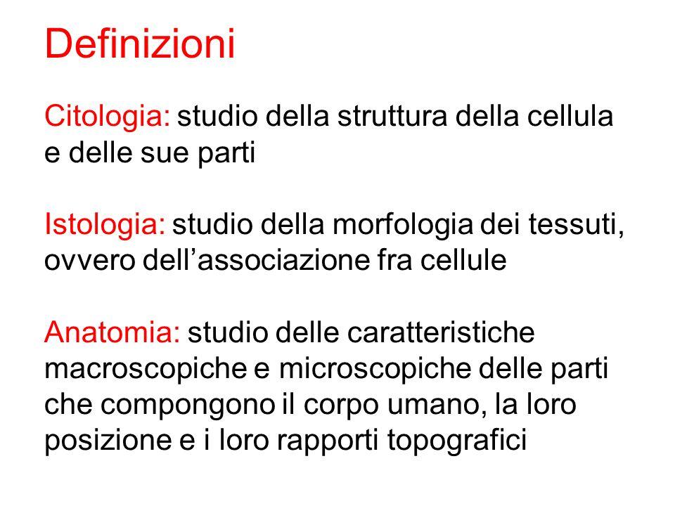 Citologia: studio della struttura della cellula e delle sue parti Istologia: studio della morfologia dei tessuti, ovvero dellassociazione fra cellule
