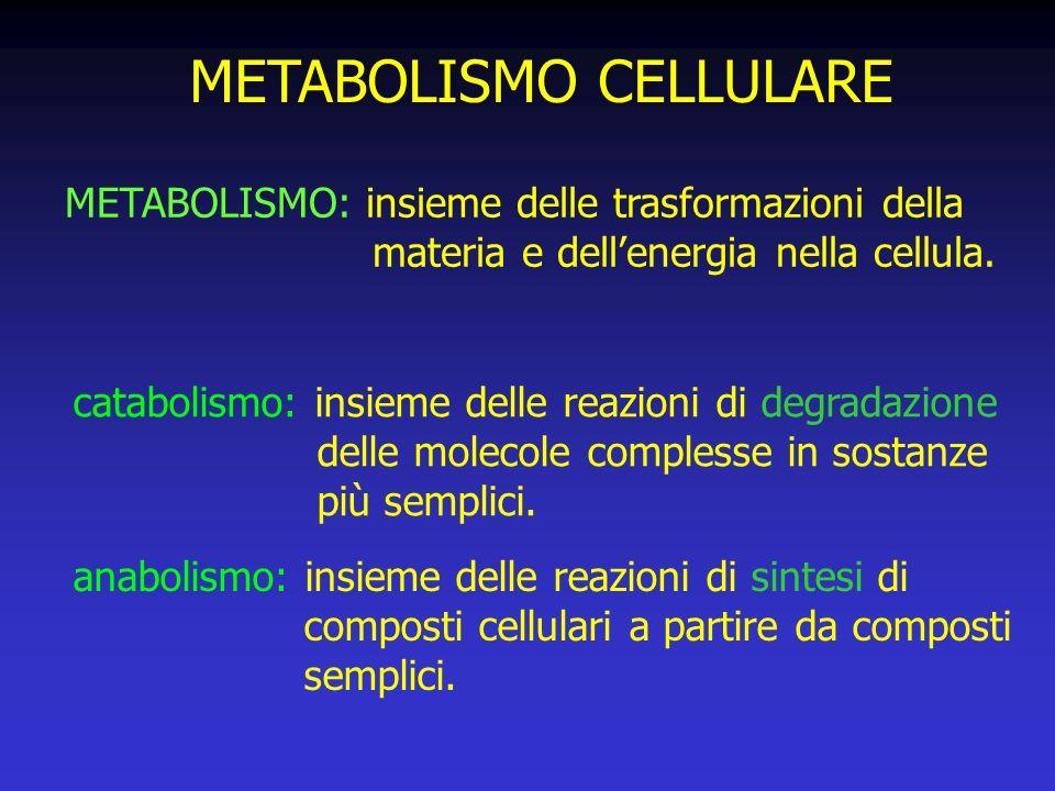 METABOLISMO CELLULARE METABOLISMO: insieme delle trasformazioni della materia e dellenergia nella cellula.