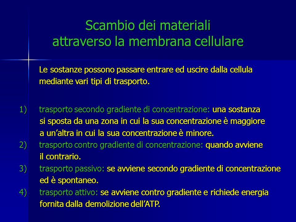 Scambio dei materiali attraverso la membrana cellulare Le sostanze possono passare entrare ed uscire dalla cellula mediante vari tipi di trasporto. 1)