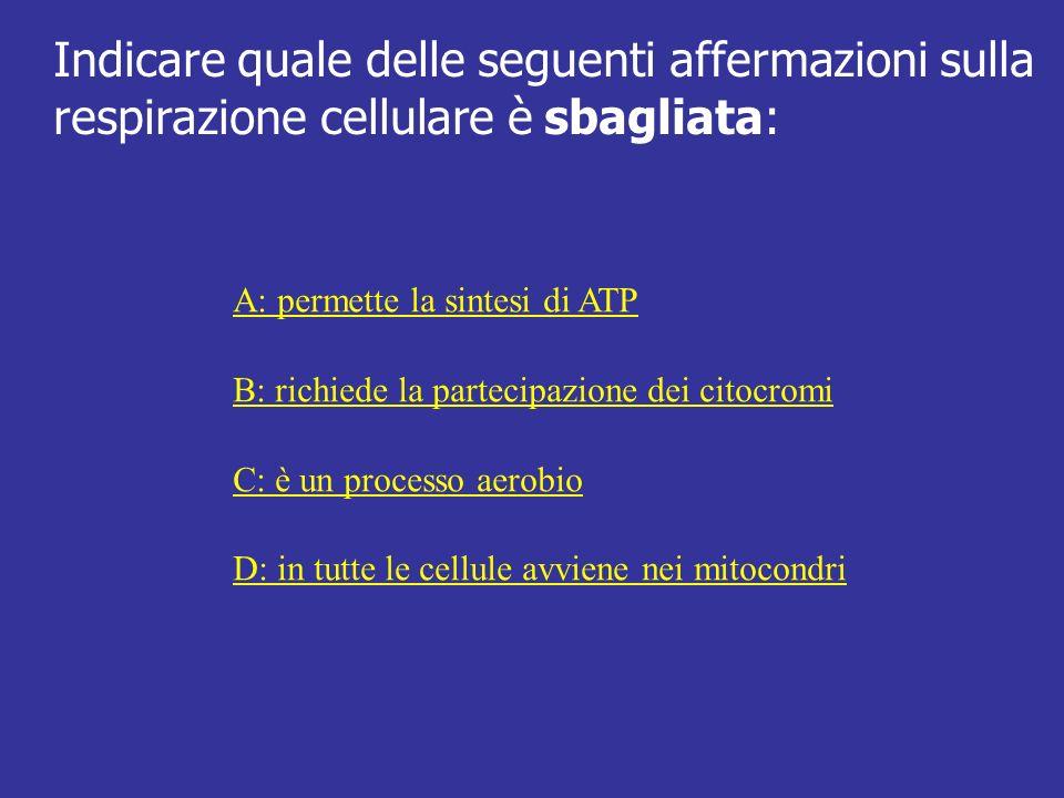 Indicare quale delle seguenti affermazioni sulla respirazione cellulare è sbagliata: A: permette la sintesi di ATP B: richiede la partecipazione dei c