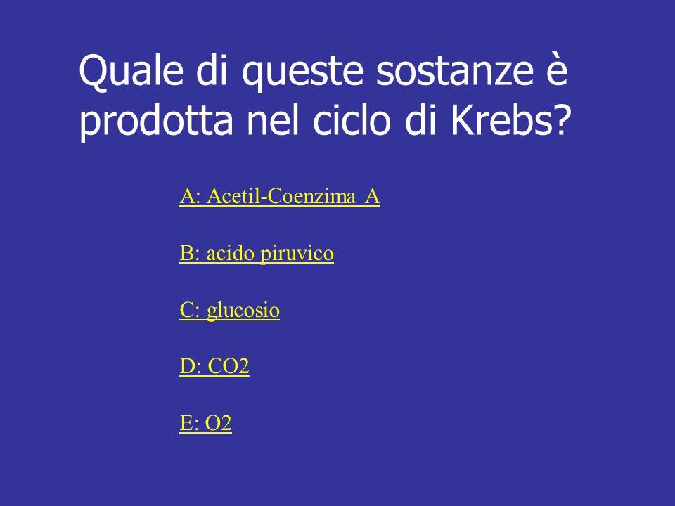 Quale di queste sostanze è prodotta nel ciclo di Krebs? A: Acetil-Coenzima A B: acido piruvico C: glucosio D: CO2 E: O2