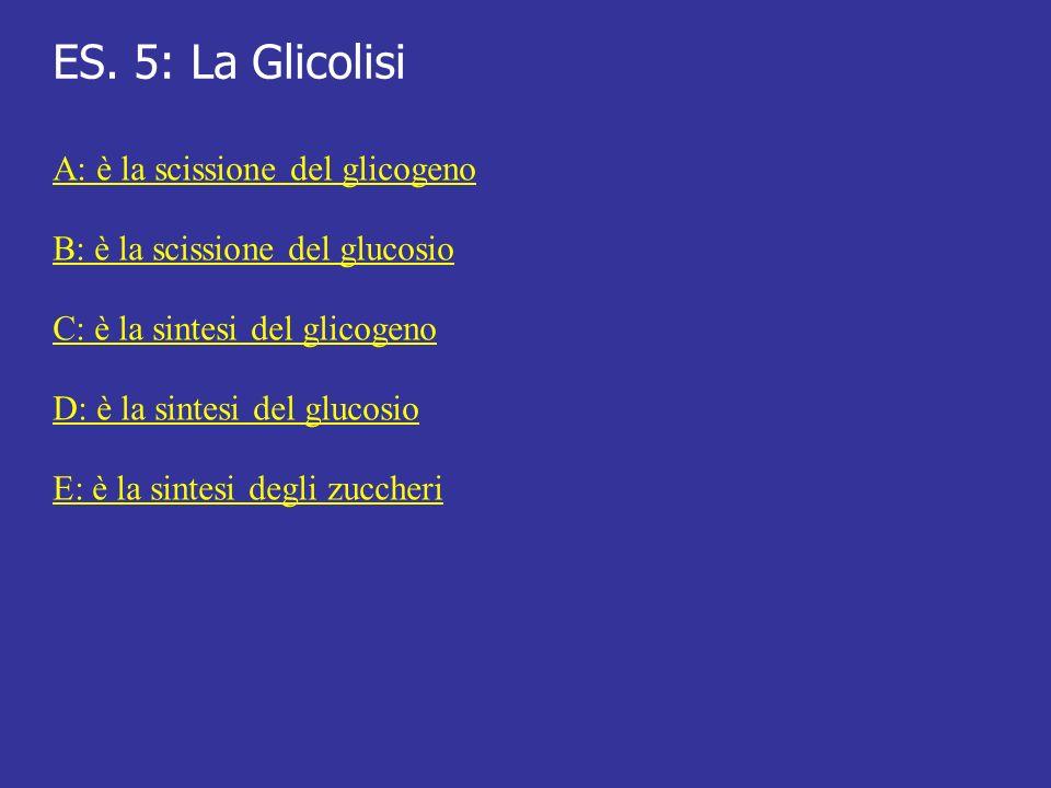 ES. 5: La Glicolisi A: è la scissione del glicogeno B: è la scissione del glucosio C: è la sintesi del glicogeno D: è la sintesi del glucosio E: è la
