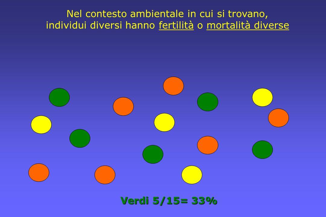 Verdi 5/15= 33% Nel contesto ambientale in cui si trovano, individui diversi hanno fertilità o mortalità diverse