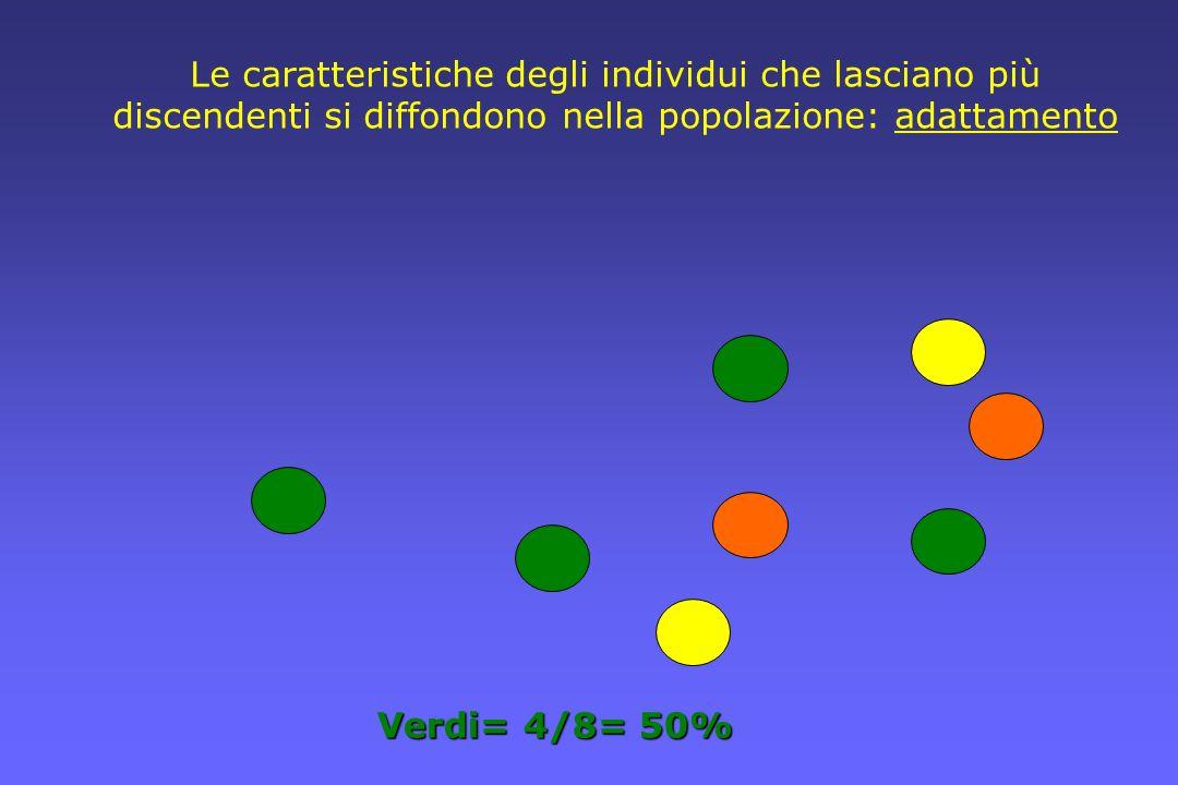 Le caratteristiche degli individui che lasciano più discendenti si diffondono nella popolazione: adattamento Verdi= 4/8= 50%